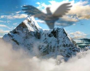 птица и планина