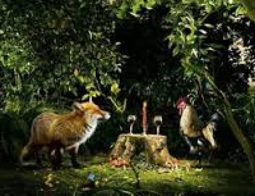 Лисицата Хаджийка